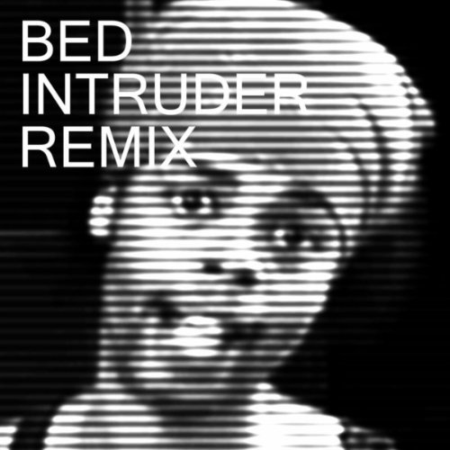 Bed Intruder Song (Pete Proto ()