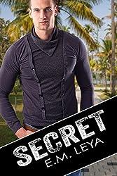 Secret (Save The Kids Book 2)
