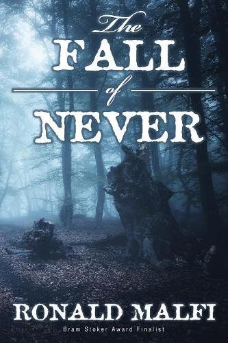 The Fall of Never PDF