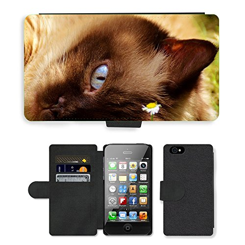 Just Phone Cases PU Leather Flip Custodia Protettiva Case Cover per // M00127598 Chat British Shorthair Fur Brown // Apple iPhone 4 4S 4G