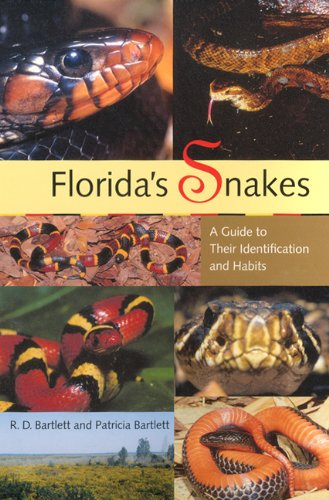 Florida's Snakes: A Guide to Their Identification and - Snakes In Florida