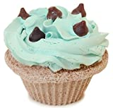 Fizzy Baker Mint Chocolate Chip Cupcake Bath Bomb