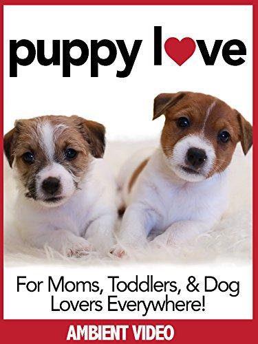 Puppy Love Puppies