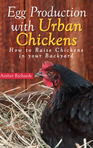 Egg Production with Urban Chickens: How to Raise Chickens in Your Backyard by [Richards, Amber]