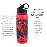 Silver Buffalo ML1564 Marvel Spider-Man Swinging in the City Tritan Water Bottle, 20-Ounces