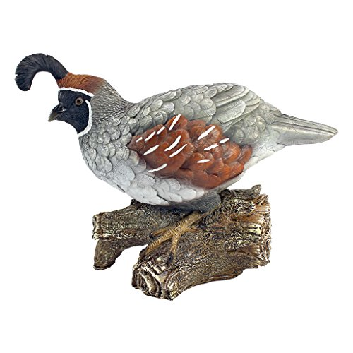 Design Toscano Coco The Quail Bird Statue, used for sale  Delivered anywhere in USA