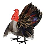 Beistle 1-Pack Decorative Feather Turkey, 5-Inch