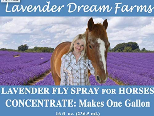 Fly Spray Concentrate with 100% Pure Lavender, Makes one Gallon.
