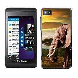 Qstar Arte & diseño plástico duro Fundas Cover Cubre Hard Case Cover para Blackberry Z10 ( Trunk Elephant Africa Mountains Plain)
