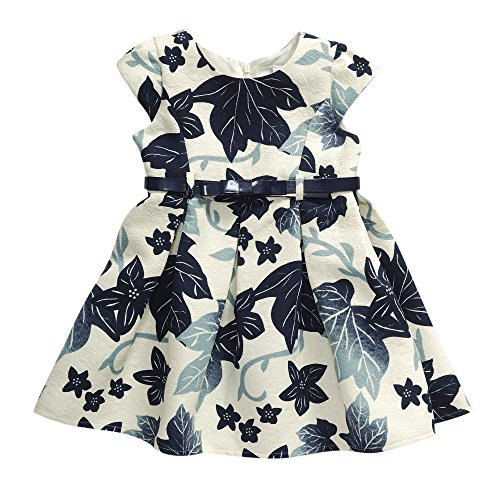 Sweet Heart Rose Toddler Girls' Floral Jacquard Pleated Dress