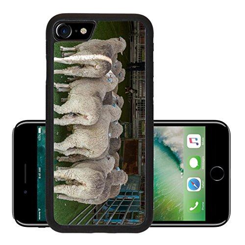 liili-premium-apple-iphone-7-iphone7-aluminum-backplate-bumper-snap-case-2015-sydney-royal-easter-sh