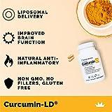 Liposomal Organic Curcumin - BioPerine Free to