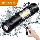 300 pro indoor cycle - EDC LED Flashlight + Camping COB Lantern,300 Lumen Flash Light (Pro-Black)