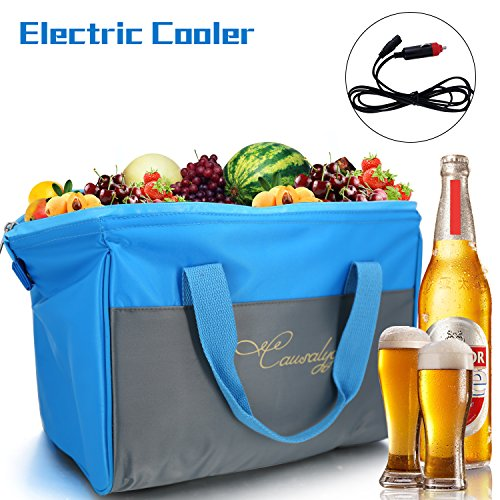 Argus Le 20-Can 12V DC Soft Portable Electric Cooler/Warmer 18 Liter Tote Bag with Thermoelectric System For Camping, Picnic