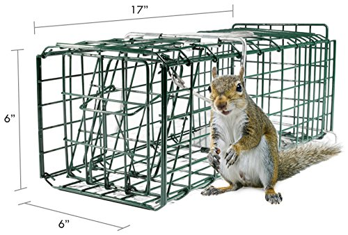 "Parker 8 Live Animal Trap (17"" X 6"" X 6"") Catch & Release Rodent Cage - Highly Efficient Professional Humane Solution for Rabbit, Squirrel, Mole, Gopher, Skunk - Steel"