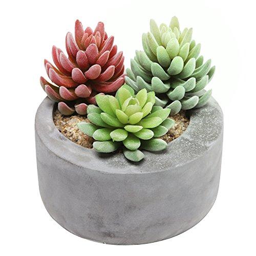 Concrete Round Planter - 6