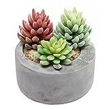 "7"" Gray Cement Modern Circular Succulent Pot Planter / Candleholder / Storage Bowl for Keys & Coins"