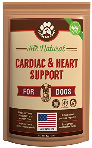 Dog Cardio Strength Heart