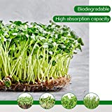 "15 Pack 10"" x 20"" Jute Plant Grow Mats- Fully"