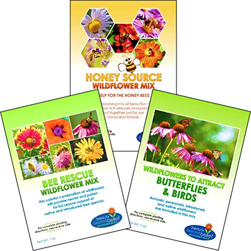 Wildflower Seeds Bulk Perennial Packets - 8 BONUS Gardening eBooks - 87,000 Open-Pollinated, Non-GMO, No Fillers, Annual, Flower Seed For Fall Planting, Bees, Humming Birds, Butterflies, Pollinators by Beauty Beyond Belief