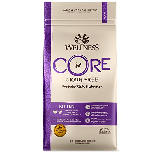 Wellness Core Natural Grain Free Dry Cat Food, Kitten Turkey & Chicken Recipe, 5-Pound Bag (Best Natural Kitten Food)