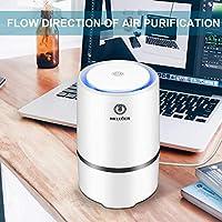 MELEDEN Purificador de aire para el hogar con filtros: Amazon.es ...