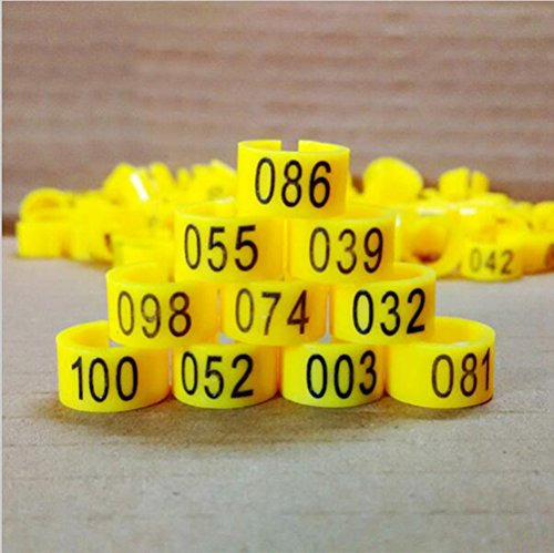 100pcs Bird Rings Leg Bands for Pigeon Parrot Finch Canary
