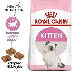 Royal Canin Croquetas para Gatos, Kitten, 3.17 kg (El empaque puede variar)