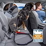 Kurgo K81009 Dog Leash to Seatbelt Buckle