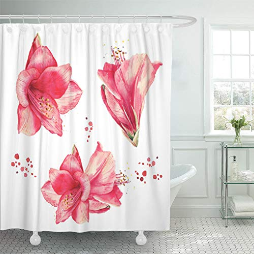 Emvency Shower Curtain Pink Exotic Watercolor Floral Vintage Lily Flowers Collection Shower Curtains Sets with Hooks 72 x 72 Inches Waterproof Polyester Fabric