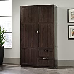 Sauder 420055 Select Storage Cabinet, Cinnamon Cherry Finish