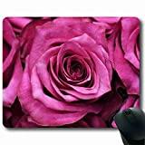 Professional Gaming Mat Mouse Pad Nature 8.66 in X 7 in (Large Size) Suitable for business people MP109426