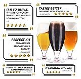 Mr. Beer Complete Beer Making Kit with Bottles