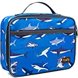 Kids Lunch box Insulated Soft Bag Mini Cooler Back to School Thermal Meal