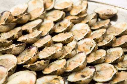 Chesapeake Bay Clams, Top Necks, On The Half Shell - Frozen - 72 Count Per - Frozen Clams
