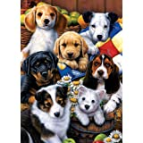 Tree Free Greetings Puppy Friends Birthday Cards, 2 Card Set, Multicolored (14193)