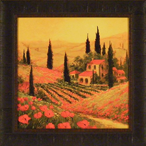 Home Cabin Décor Poppies of Toscano II by Art Fronckowiak 20x20 Europe Italy Red Flowers Tuscany Landscape Trees Villa Framed Art Print Picture