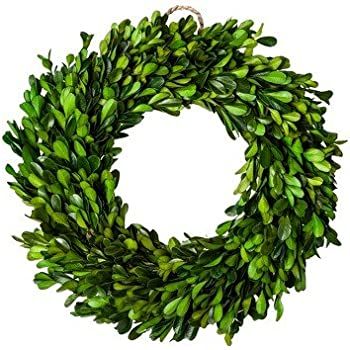 """New Preserved Boxwood Leaves Wreath Green (11"""")"""