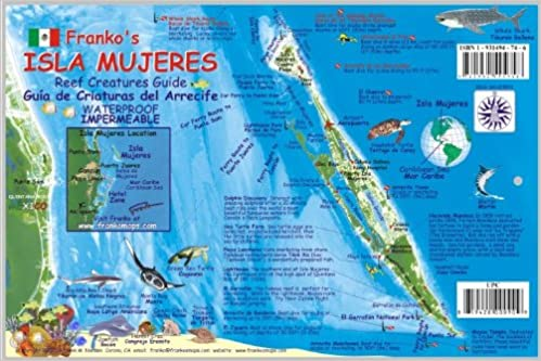 Isla Mujeres Map Reef Creatures Guide Franko Maps Laminated Fish