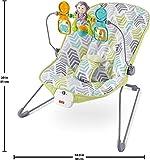 Fisher-Price Baby Bouncer, Arrow Dynamic
