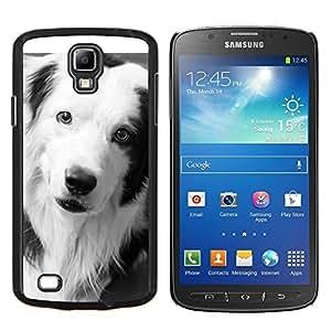 Border Collie Negro Perro Raza Blanca- Metal de aluminio y de plástico duro Caja del teléfono - Negro - Samsung i9295 Galaxy S4 Active / i537 (NOT S4)