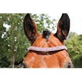 Cwell Equine BLING!*Dressage*Mega-Sparkly Leather Browband*5Row Crystals*RED/CLEAR F/C/P BLACK LEATHER