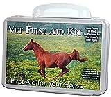 Vet First Aid Kit (equine)