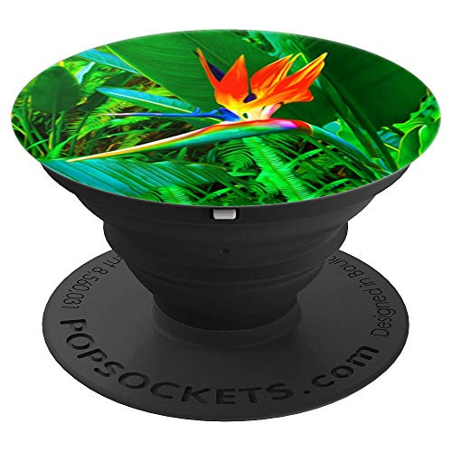 Hawaiian Bird of Paradise Flower in a Botanical Garden - PopSockets Grip and Stand for Phones and Tablets ()