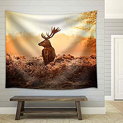 Magnificent Portrait, Red Deer in Morning Sun Fabric Wall, Quality Creation