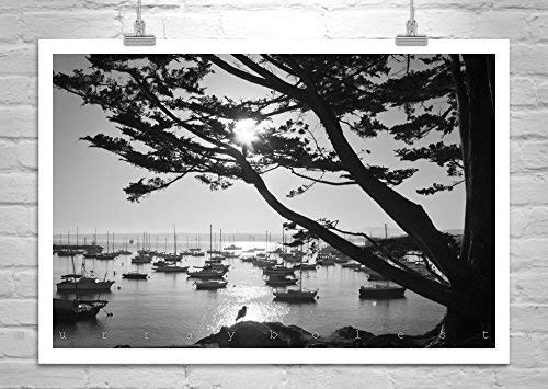 Monterey Bay Sailboat Art, Black and White Sailing Picture