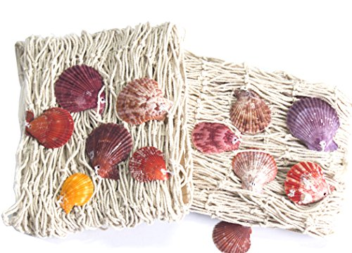 Natural Net - Asunflower Set of 2 Natural Fish Net Mermaid Party Decoration with Shells,Beige