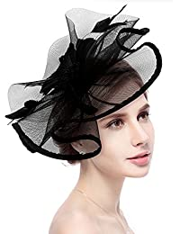 Fascinator Hat Jack   Rose Flower Feather Net Mesh Kentucky Derby Tea Party  Headwear with Hair 600c28984f8