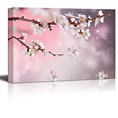 Canvas Prints Wall Art - Artistic Photograph of Sakura/Cherry Blossom in Spring | Modern Wall Decor/Home Art Stretched Gallery Canvas Wrap Giclee Print & Ready to Hang - 32