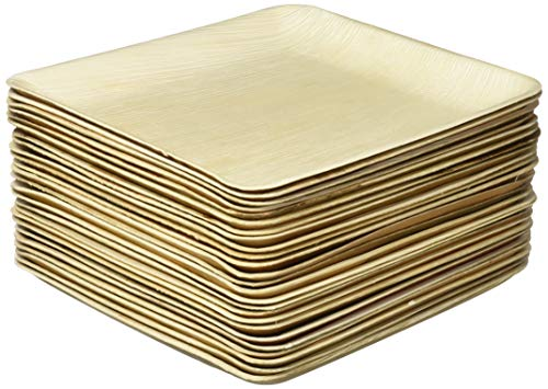 Large Palm Leaf Plates - Environmentally Disposable Tableware | 25 Pieces | Ø 10 Inches Square | Bamboo Style | Biodegradable & Compostable ()